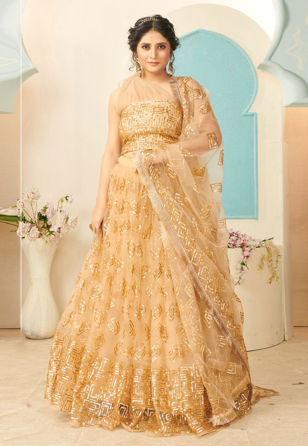 Beige Net Embroidered Designer Lehenga Choli