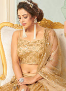 Golden Net Embroidered Designer Lehenga Choli