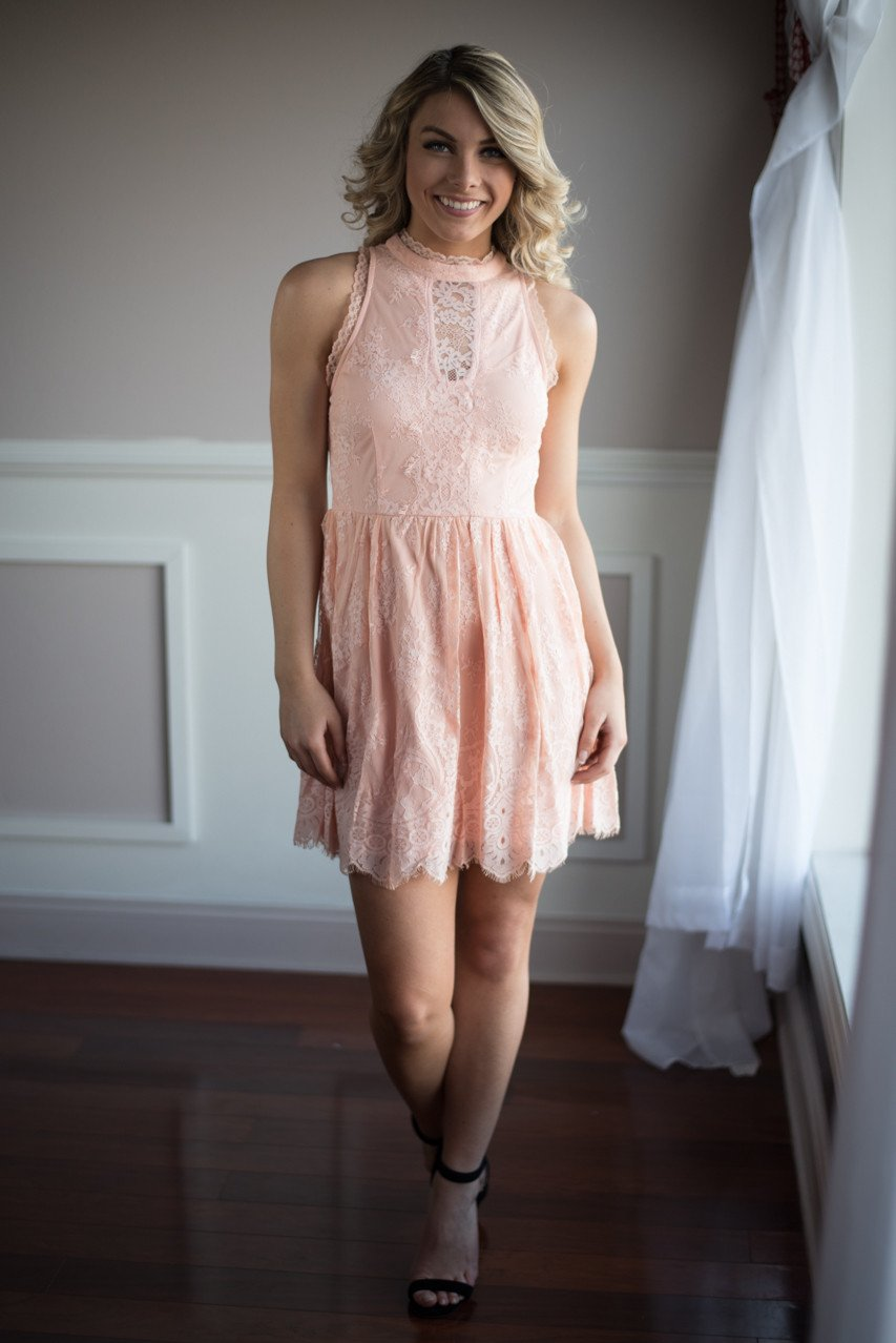 Fairy in Pink Lace Dress