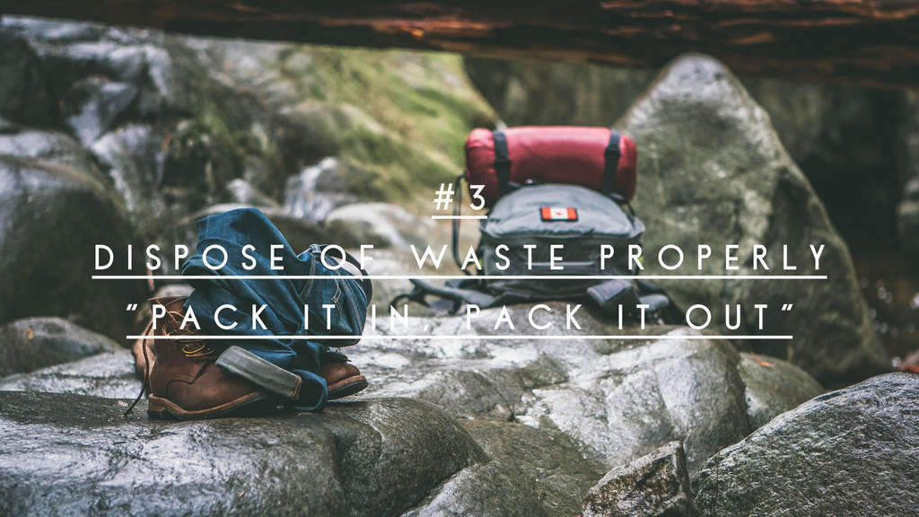 leave no trace principle 3 dispose of waste properly