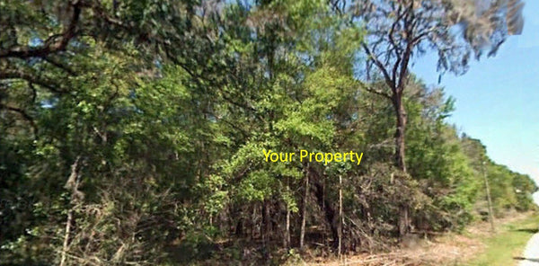 Exclusive .23 Acre Property in Lake and Fishing Community in Interlachen