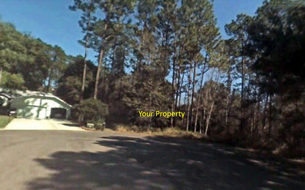 Majestic .33 acre lot Walking Distance to Rainbow River- Owner Financing