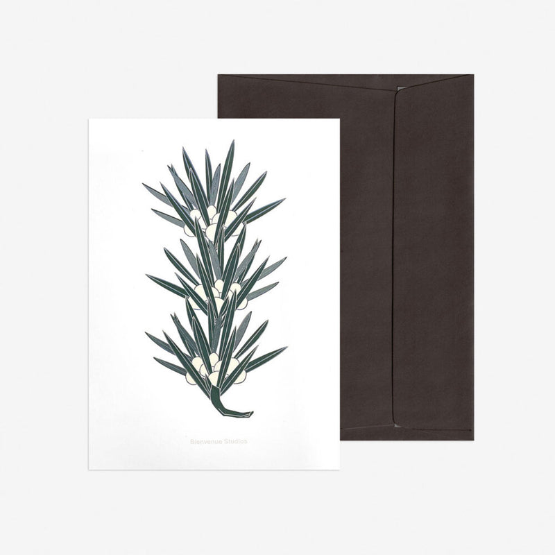 "Greeting Card ""Buddhist Pine Edition"" A5 forestgreen"