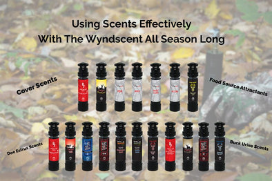 When To Use Different Scents for Wyndscent