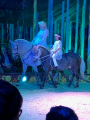 Two pony's at Gifford Circus