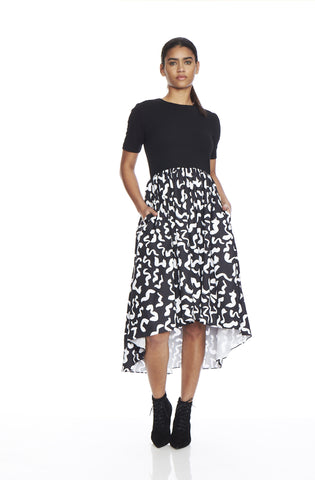 Full Skirt Dress