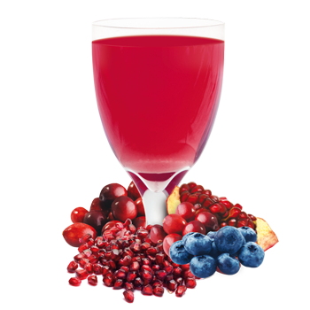 Individual Blueberry and Cran-Granata Drink Mix