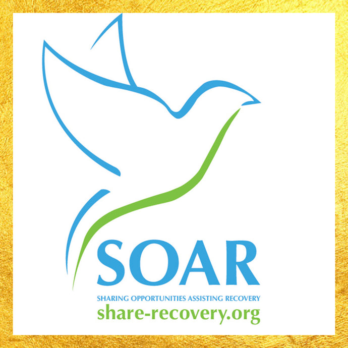 SOAR - Sharing Opportunities Assisting Recovery