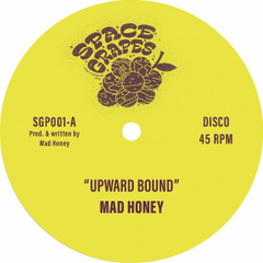 Mad Honey | Upward Bound / Treasure Every Sunset