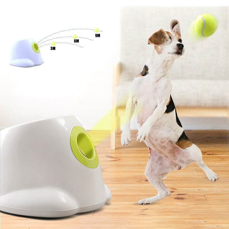 1pc Dog pet toys Tennis Launcher Automatic throwing machine Ball throw device Section emission dog dogs 110V/220V plug