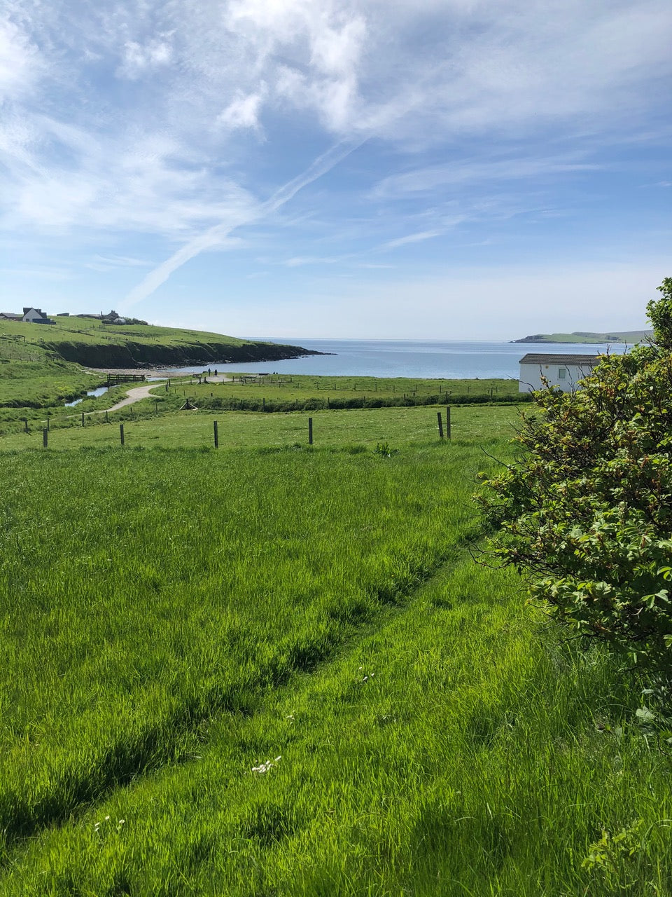 A view to Hoswick bay, Shetland, across fields on a sunny summer day. Blue sky and wispy clouds. Lush green grass.