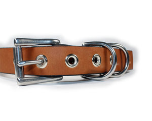 Deluxe Bridle Leather Dog Collar