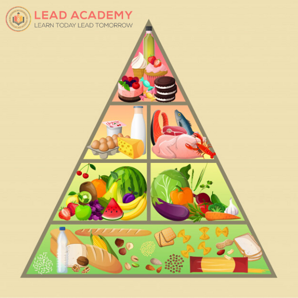 Health & Nutrition Level 3 E-Course - J MED