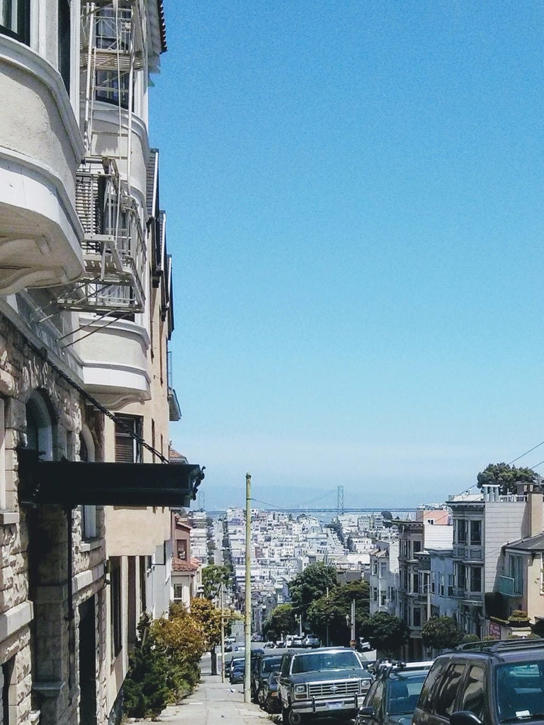 View of the SF Bay Bridge from the top of a hill on a clear day