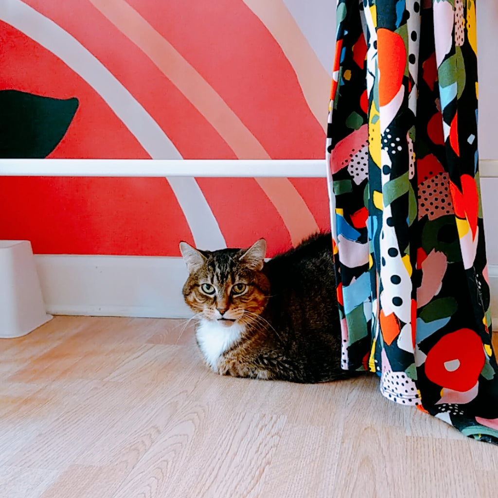 A tabby cat sits under a rack of clothing at a store.