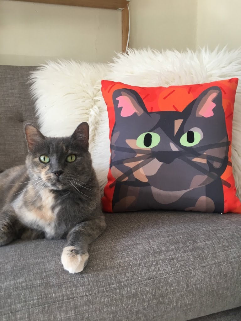 Cat with pillow