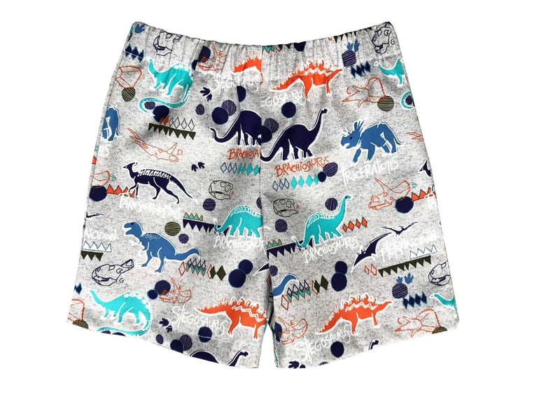 Boys Boxer Shorts Cotton Dinosaur Toddler Underwear