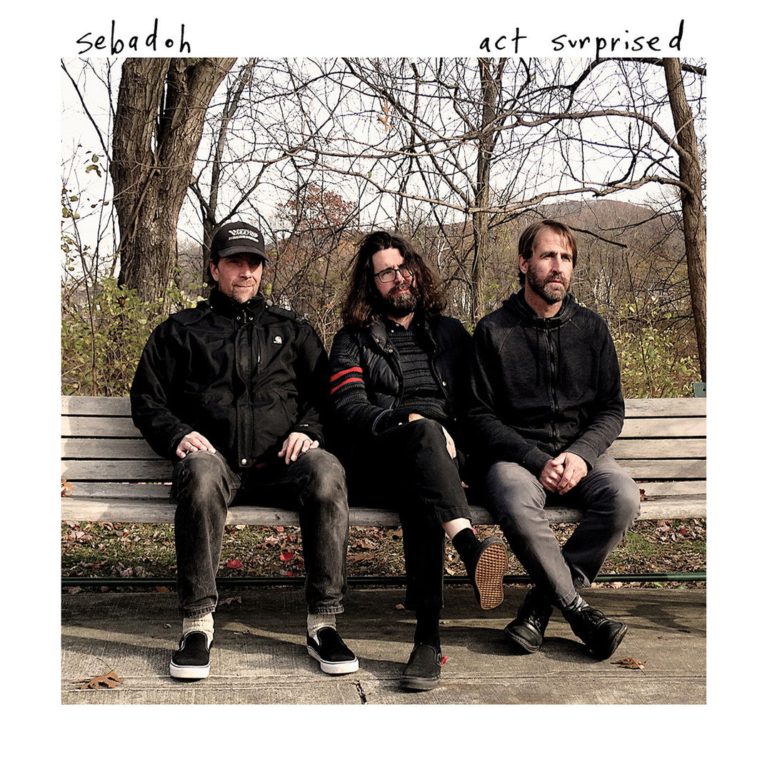Sebadoh - Act Surprised LP