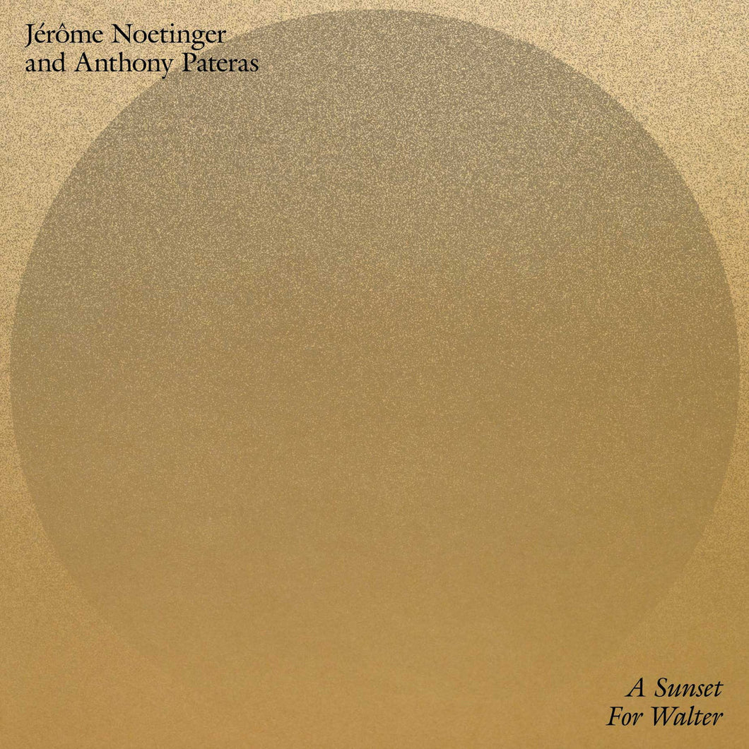 Jerome Noetinger And Anthony Pateras - A Sunset For Walter LP