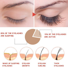 Charger l'image dans la galerie, 7 Day Eyelash Growth Serum