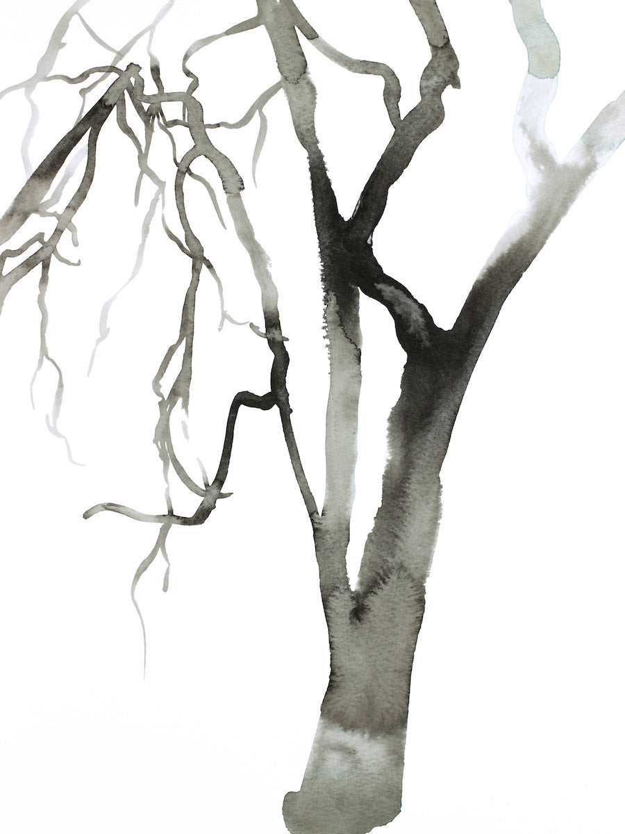 "9"" x 12"" black and white botanical tree original ink painting in an expressive, impressionist, minimalist, modern style by contemporary fine artist Elizabeth Becker"