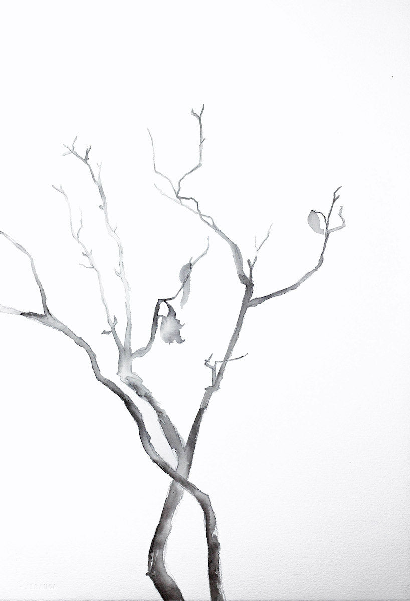 "15"" x 22"" original ink botanical nature plant painting of black and white branches in an expressive, impressionist, minimalist, modern style by contemporary fine artist Elizabeth Becker."