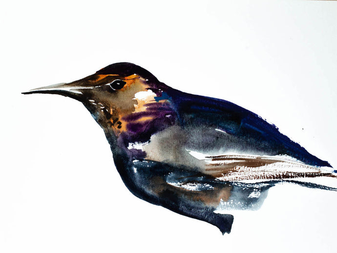 "9"" x 12"" original watercolor grackle black bird painting in an expressive, impressionist, minimalist, modern style by contemporary fine artist Elizabeth Becker"