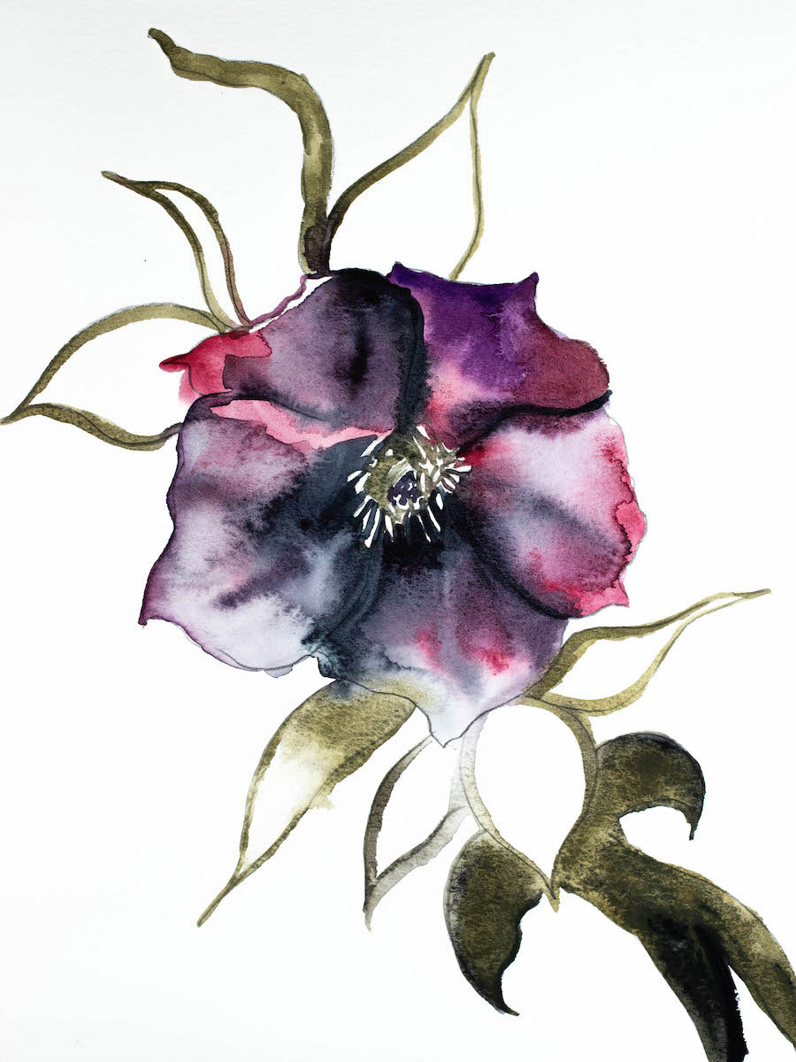 "9"" x 12"" original watercolor botanical hellebore floral painting in an expressive, impressionist, minimalist, modern style by contemporary fine artist Elizabeth Becker."