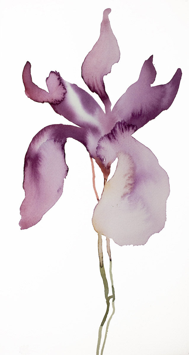 "8.5"" x 16"" original watercolor botanical iris flower painting in an expressive, impressionist, minimalist, modern style by contemporary fine artist Elizabeth Becker."