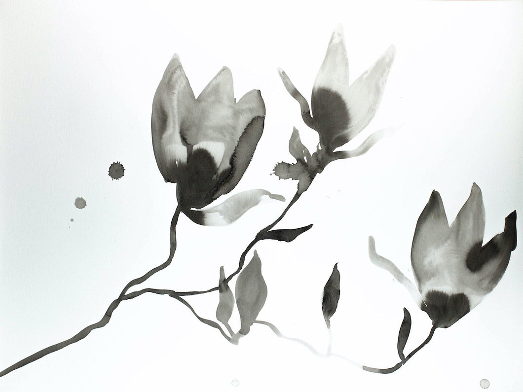 "18"" x 24"" black and white botanical magnolia flower original ink painting in an expressive, impressionist, minimalist, modern style by contemporary fine artist Elizabeth Becker"