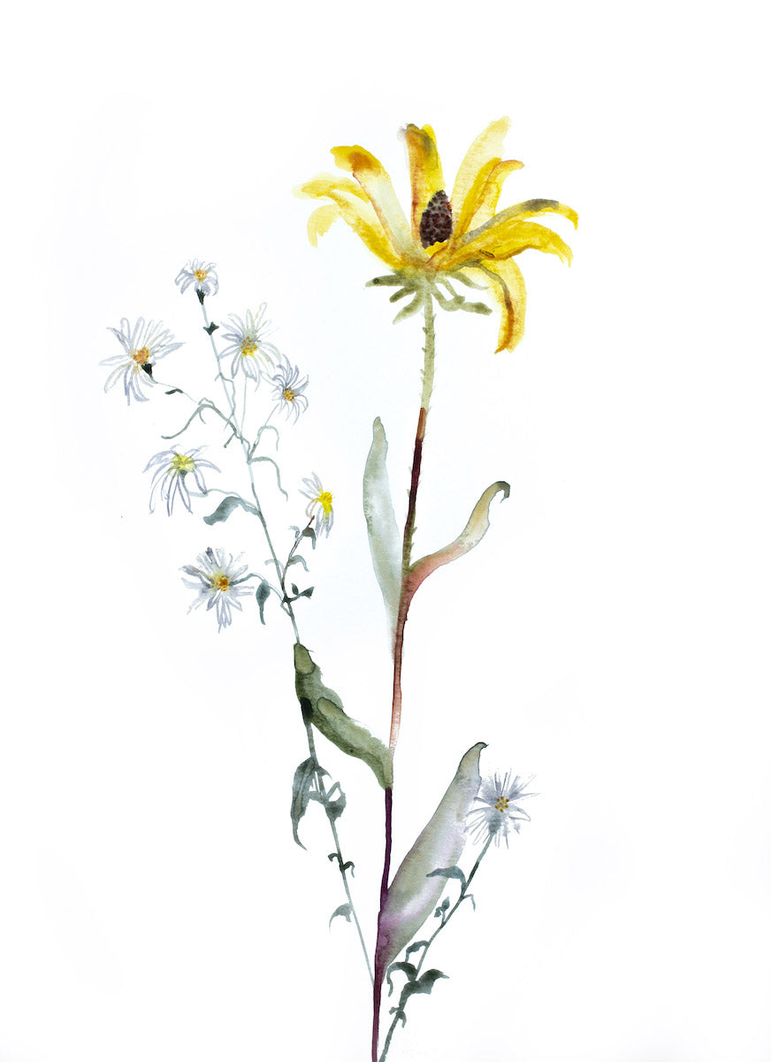 "11"" x 15"" original watercolor botanical daisy wildflower painting with soft yellow, green and white colors in an expressive, impressionist, minimalist, modern style by contemporary fine artist Elizabeth Becker"