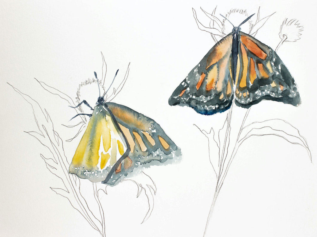 "9"" x 12"" original watercolor butterfly painting in an expressive, impressionist, minimalist, modern style by contemporary fine artist Elizabeth Becker."