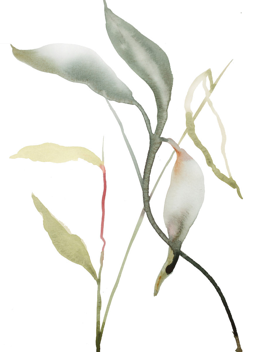 "9"" x 12"" original watercolor botanical nature plant and leaves painting in an expressive, impressionist, minimalist, modern style by contemporary fine artist Elizabeth Becker"