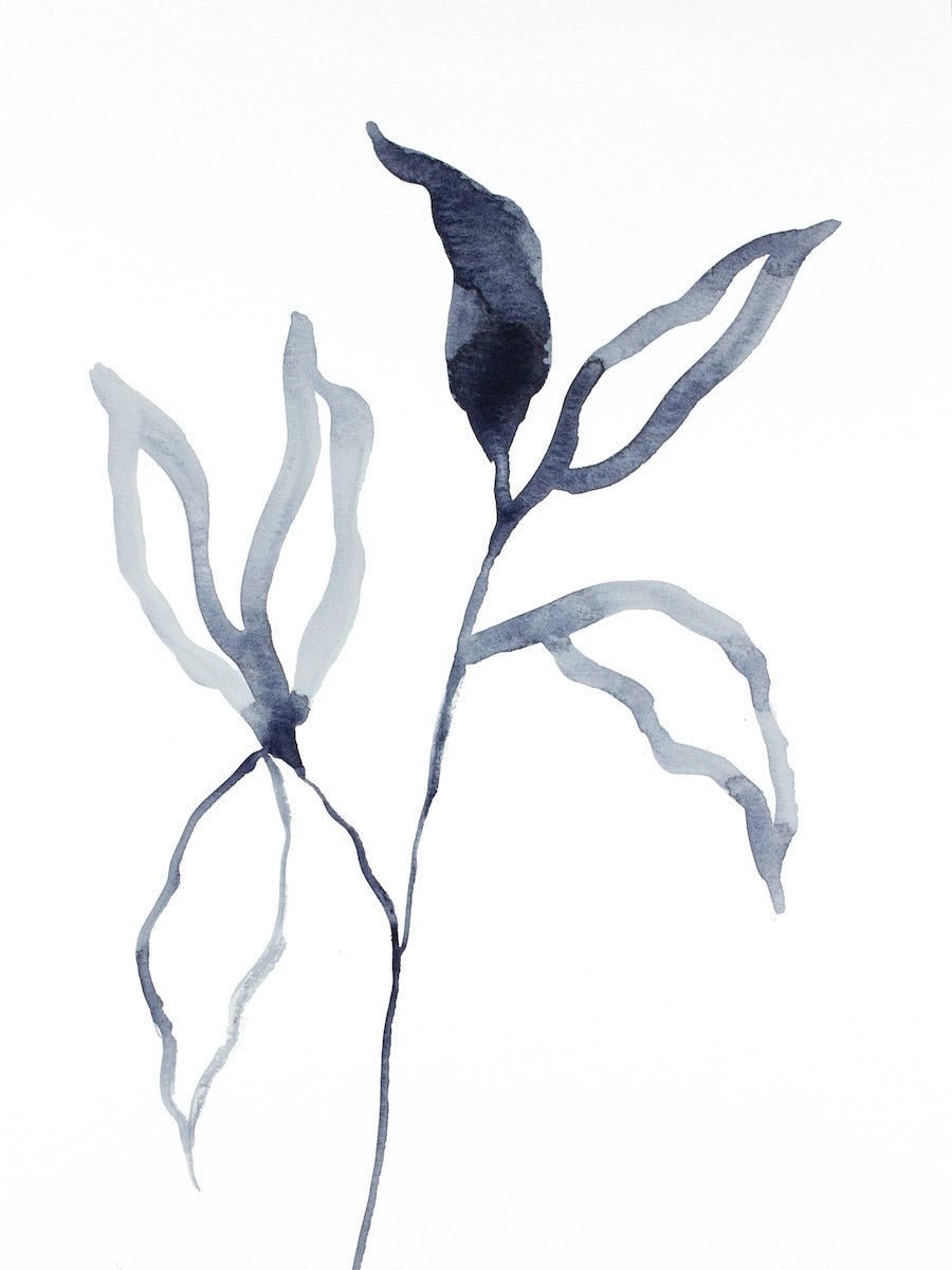"9"" x 12"" original watercolor botanical nature plant painting of black and white leaves in an expressive, impressionist, minimalist, modern style by contemporary fine artist Elizabeth Becker"