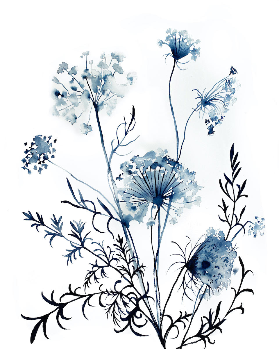 "16"" x 20"" original watercolor queen anne's lace botanical wildflower painting in an expressive, impressionist, minimalist, modern style by contemporary fine artist Elizabeth Becker. Monochromatic blue and white colors."
