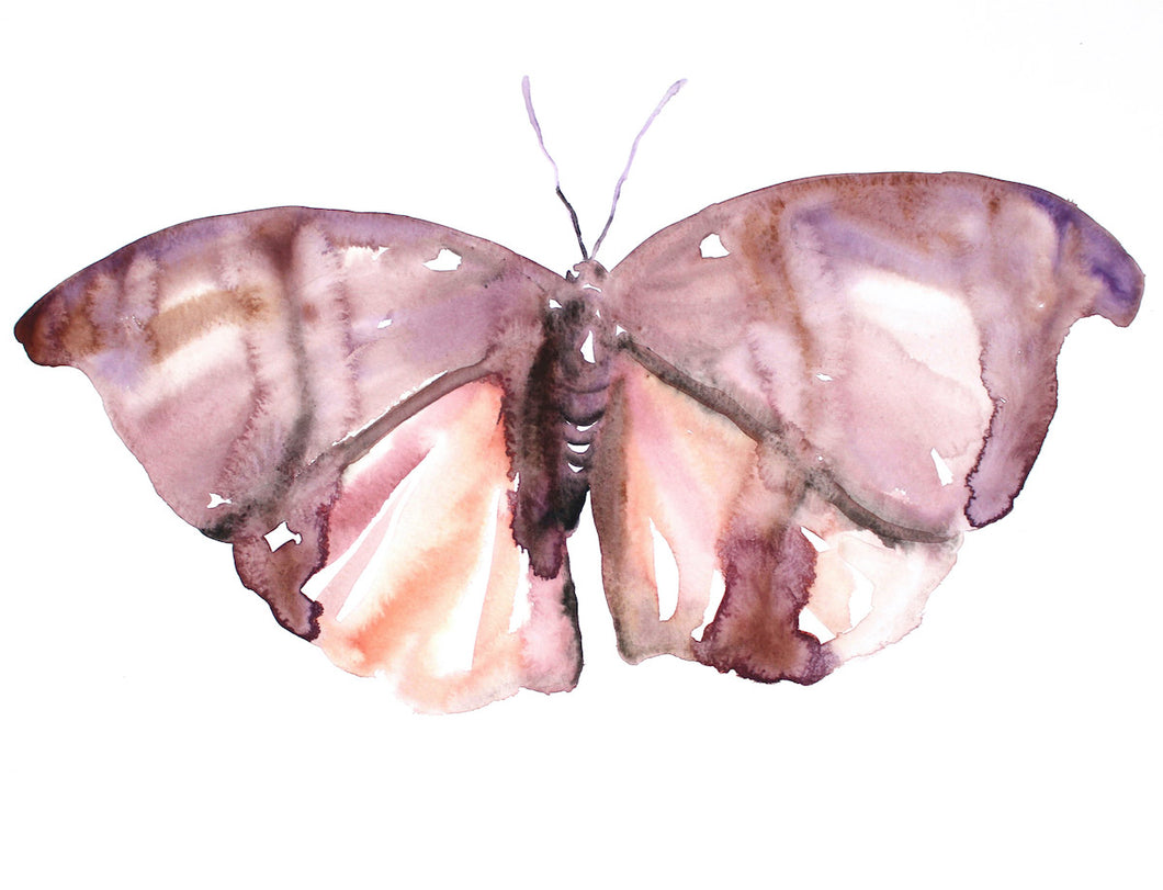 "18"" x 24"" original watercolor butterfly painting in an expressive, impressionist, minimalist, modern style by contemporary fine artist Elizabeth Becker. Soft monochromatic pink, peach, mauve purple and white colors."