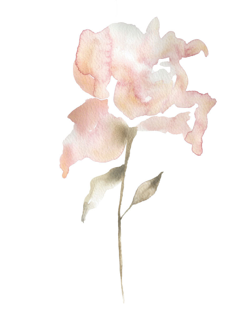 "9"" x 12"" original watercolor botanical floral rose painting in an ethereal, expressive, impressionist, minimalist, modern style by contemporary fine artist Elizabeth Becker. Soft peach, pale pink, olive green and white colors."