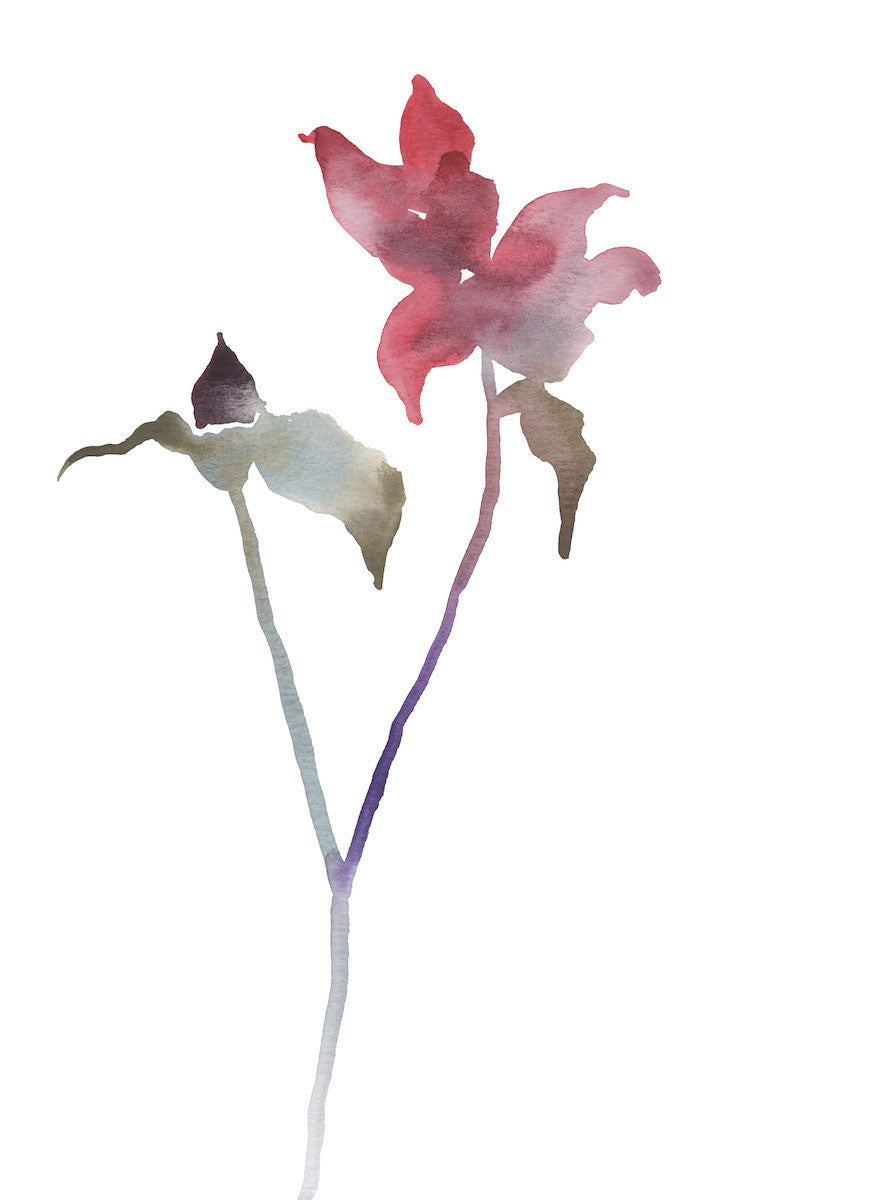 "9"" x 12"" original watercolor botanical floral rose bud painting in an ethereal, expressive, impressionist, minimalist, modern style by contemporary fine artist Elizabeth Becker. Soft red, pink, purple, olive, blue green and white colors."