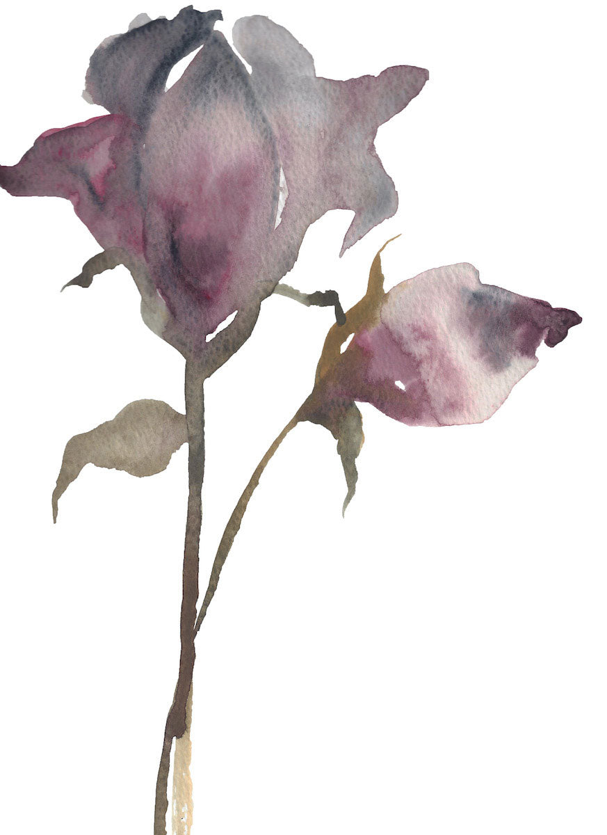 "9"" x 12"" original watercolor botanical floral rose painting in an ethereal, expressive, impressionist, minimalist, modern style by contemporary fine artist Elizabeth Becker. Soft and deep moody mauve purple, olive green and white colors."