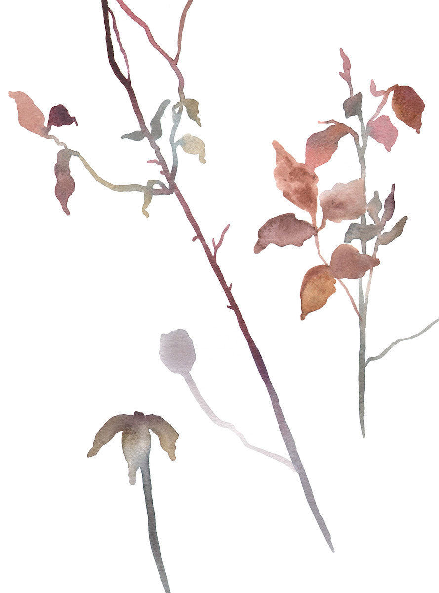 "9"" x 12"" original watercolor botanical floral rose bush branches and leaves painting in an ethereal, expressive, impressionist, minimalist, modern style by contemporary fine artist Elizabeth Becker. Soft mauve purple, light pale olive green, pink, peach and white colors."