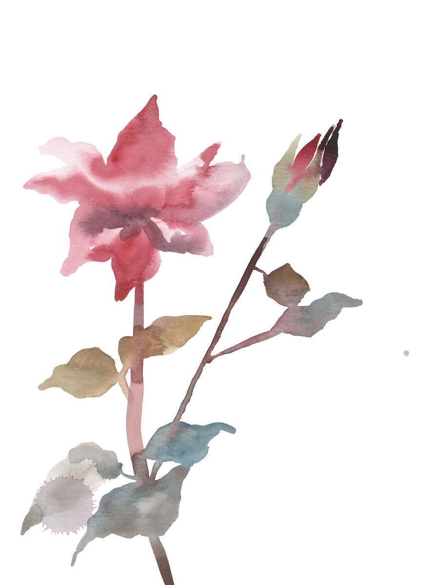 "9"" x 12"" original watercolor botanical simple floral rose painting in an ethereal, expressive, impressionist, minimalist, modern style by contemporary fine artist Elizabeth Becker. Soft red, pink, olive gold, light blue green and white colors."