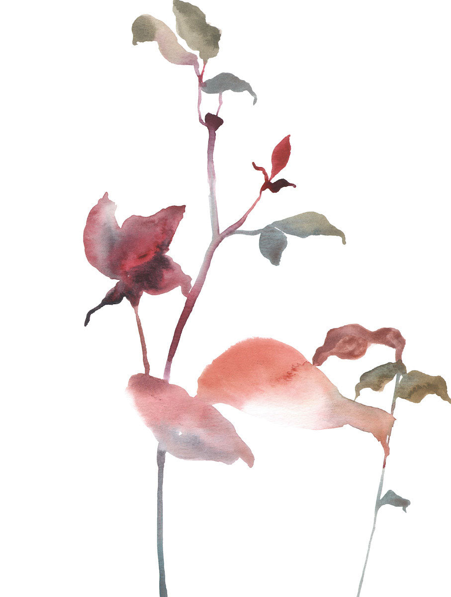 "9"" x 12"" original watercolor botanical floral rose bush branches and leaves painting in an ethereal, expressive, impressionist, minimalist, modern style by contemporary fine artist Elizabeth Becker. Deep red, soft pink, peach, olive green and white colors."