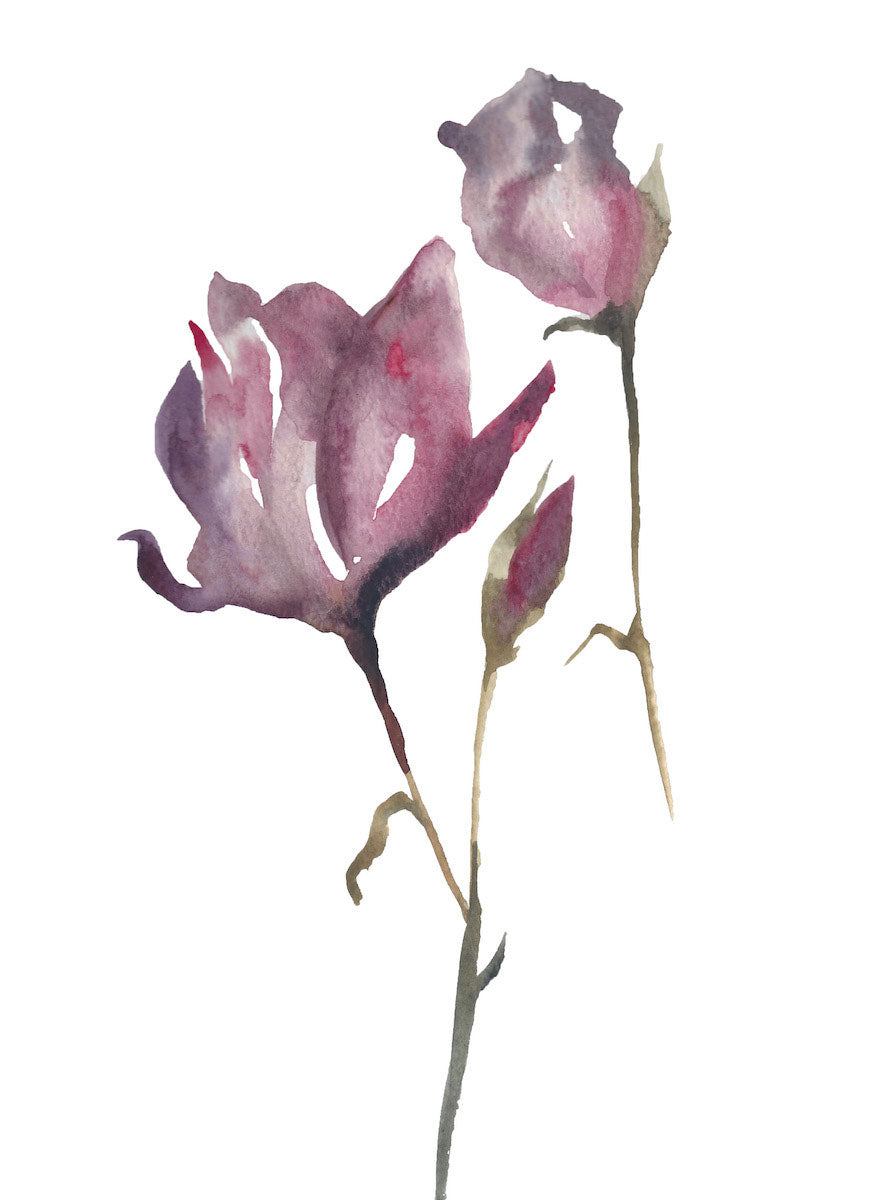 "9"" x 12"" original watercolor botanical floral rose painting in an ethereal, expressive, impressionist, minimalist, modern style by contemporary fine artist Elizabeth Becker. Soft red, pink, mauve purple, olive green and white colors."