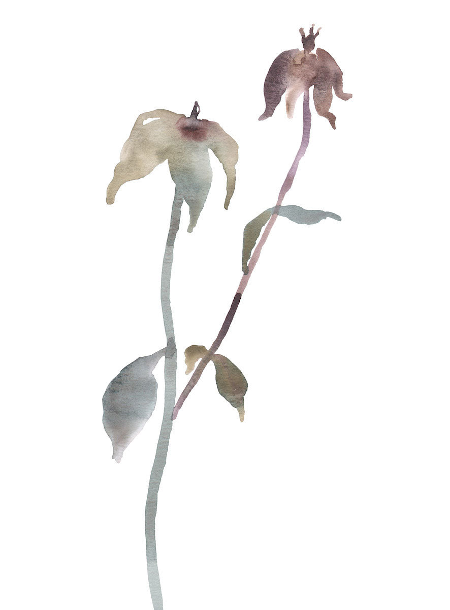 "9"" x 12"" original watercolor botanical floral rose bud painting in an ethereal, expressive, impressionist, minimalist, modern style by contemporary fine artist Elizabeth Becker. Soft mauve purple, olive gold, blue green and white colors."
