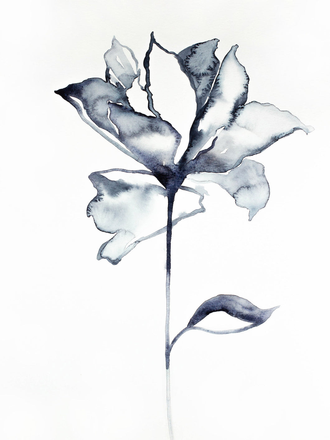 "9"" x 12"" original watercolor botanical floral rose painting in an expressive, impressionist, minimalist, modern style by contemporary fine artist Elizabeth Becker. Soft black, gray and white colors."