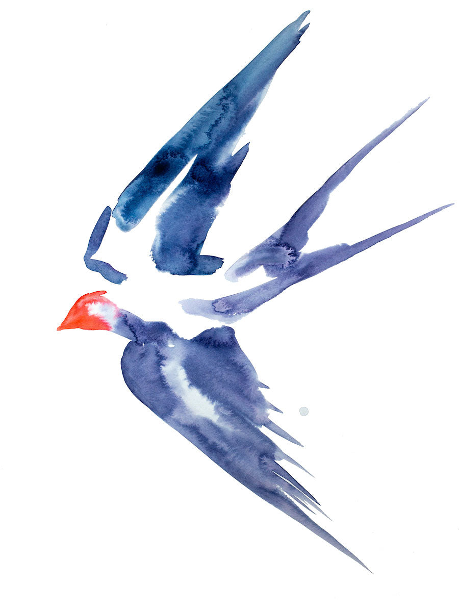 "18"" x 24"" original watercolor and ink flying swallow bird painting in an expressive, impressionist, minimalist, modern style by contemporary fine artist Elizabeth Becker. Blue, purple red and white colors."