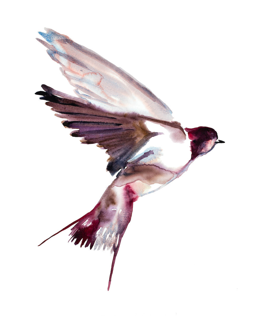 "16"" x 20"" original watercolor flying swallow bird painting in an expressive, impressionist, minimalist, modern style by contemporary fine artist Elizabeth Becker. Monochromatic soft pink, red, mauve purple and white colors."