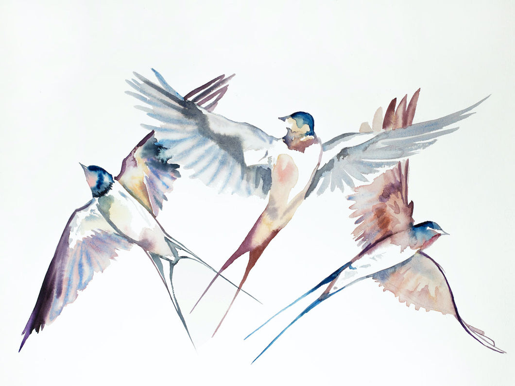 "18"" x 24"" original watercolor flying swallow birds painting in an expressive, impressionist, minimalist, modern style by contemporary fine artist Elizabeth Becker"