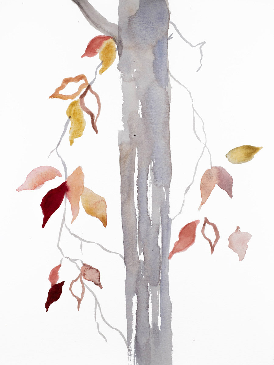 "9"" x 12"" original watercolor botanical nature painting of tree and leaves in an expressive, impressionist, minimalist, modern style by contemporary fine artist Elizabeth Becker. Soft gray, pink, peach, red, gold and white colors."
