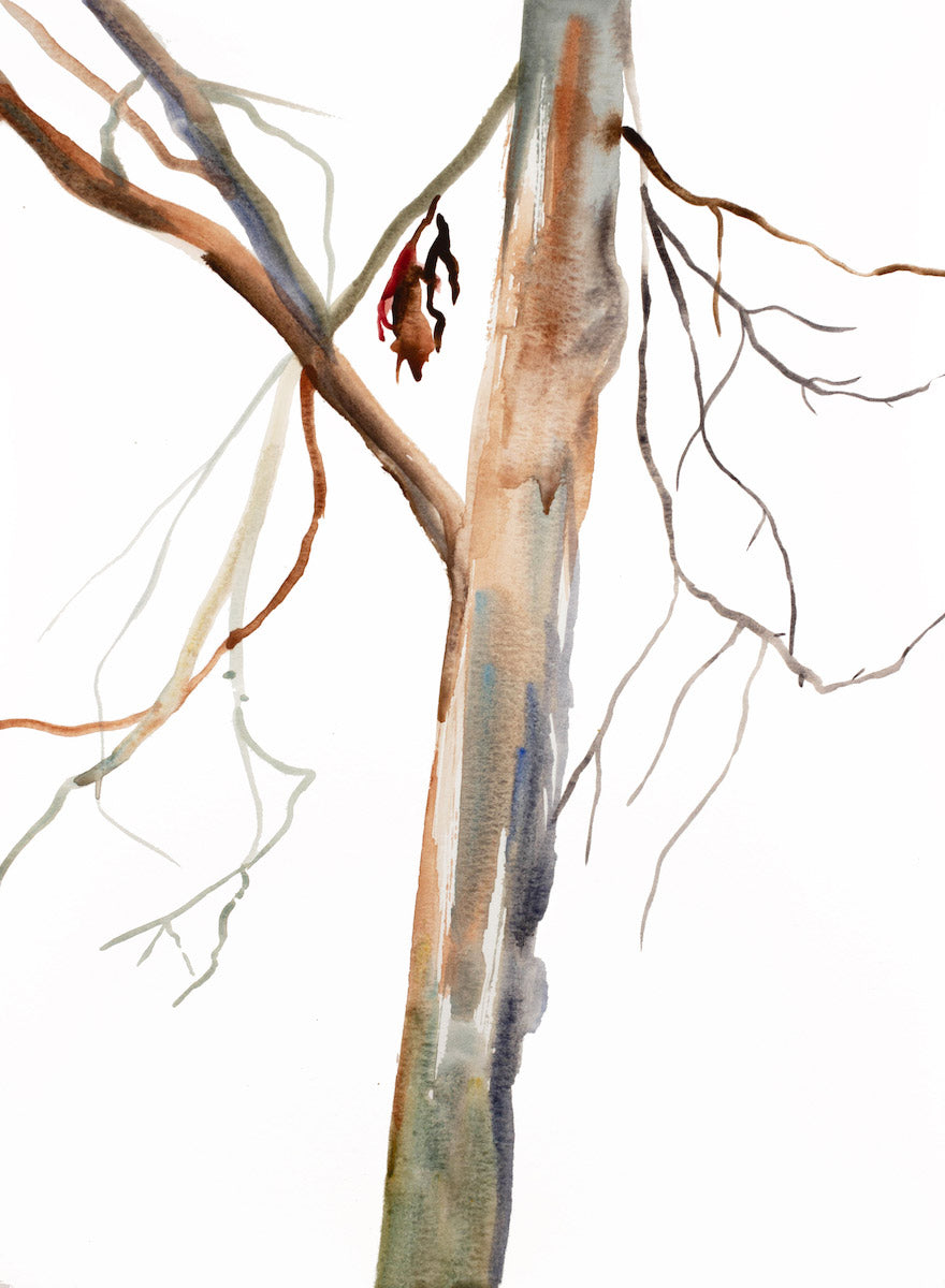 "11"" x 15"" original watercolor botanical nature painting of tree and leaves in an expressive, impressionist, minimalist, modern style by contemporary fine artist Elizabeth Becker. Soft neutral brown, burnt sienna and white colors."